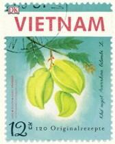 Jean-Philippe, Youssouf Mido & Hando: Vietnam