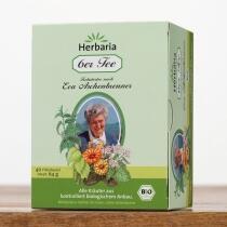 Herbaria 6er Tee nach Eva Aschenbrenner, Filterbeutel
