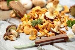 Erfahren Sie mehr über die Delikatessen aus dem Wald