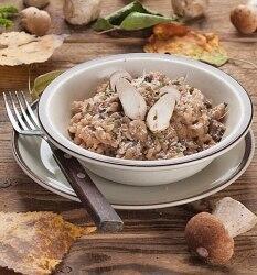 Entdecken Sie hier mehr schmackhafte Pilzrezepte