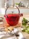 Staub Teekanne und Wasserkessel aus Gusseisen in kirschrot