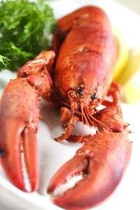 Meeresfrüchte - Vom Charme des Meeresbodens