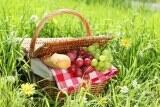 Picknick - Genuss im Grünen