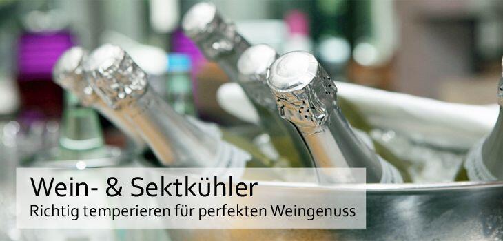 Wein- & Sektkühler - Richtig temperieren für den perfekten Weingenuss
